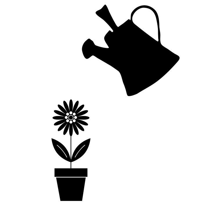 kostenlose illustration gie kanne blume pflanze topf
