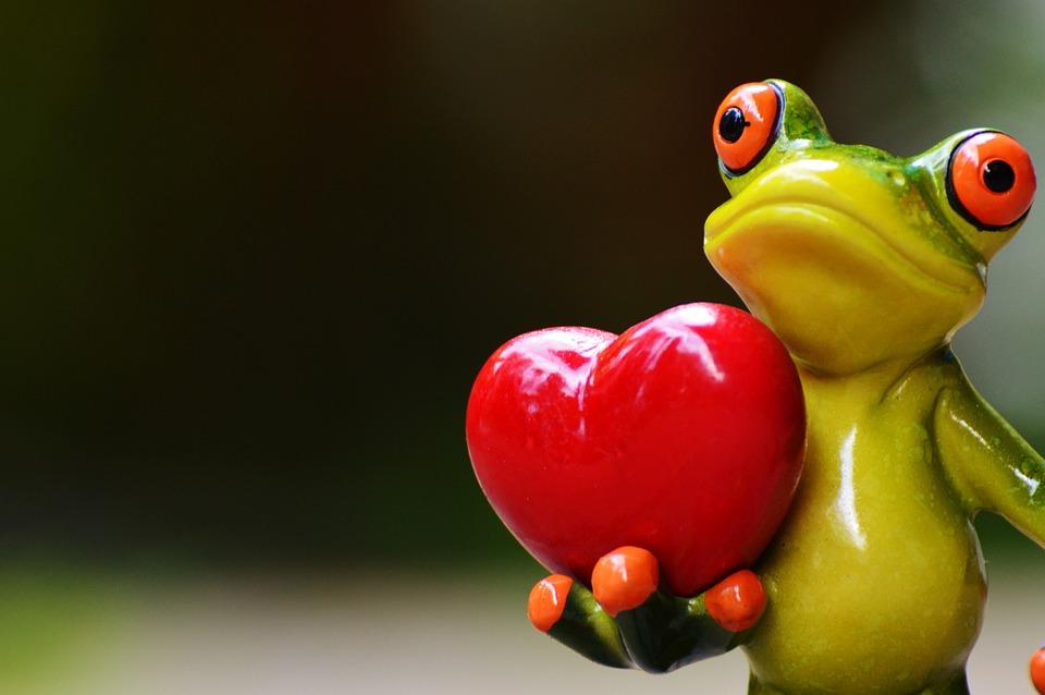Liebe, Valentinstag, Pose, Herz, Lustig, Frosch, Tier