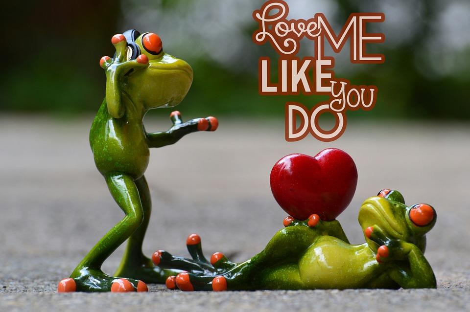 Liebe Valentinstag Pose Herz Lustig Frosch Tier