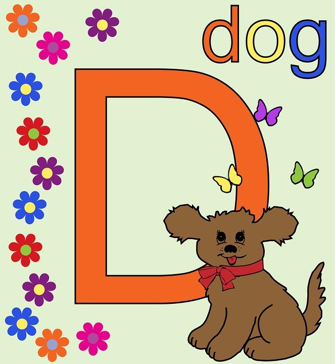 Letter D Alphabet Free Image On Pixabay