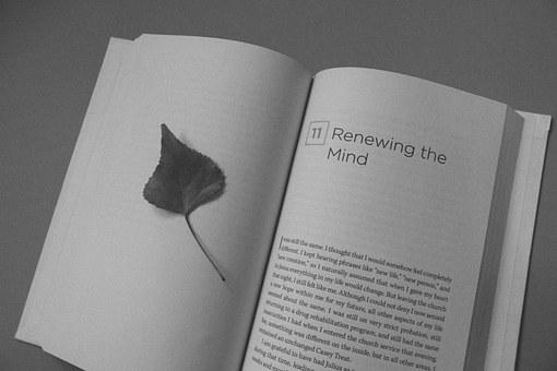 Book Open Book Leaf Mind Renew Black And W