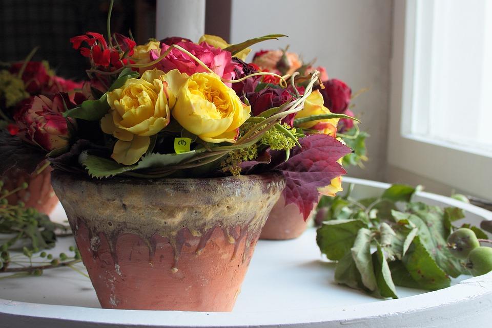 Stilleben blumentopf dekoration kostenloses foto auf pixabay for Blumentopf dekoration