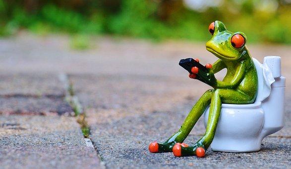 カエル, 携帯電話, トイレ, おかしい, セッション, かわいい, トイレ