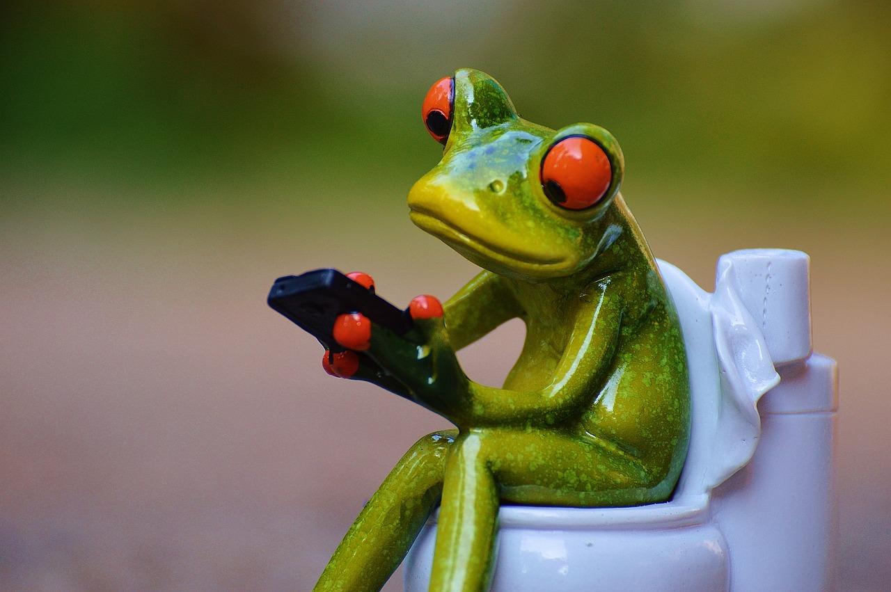 Картинки угарных лягушек при