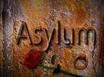 asylum, refugees, tracking