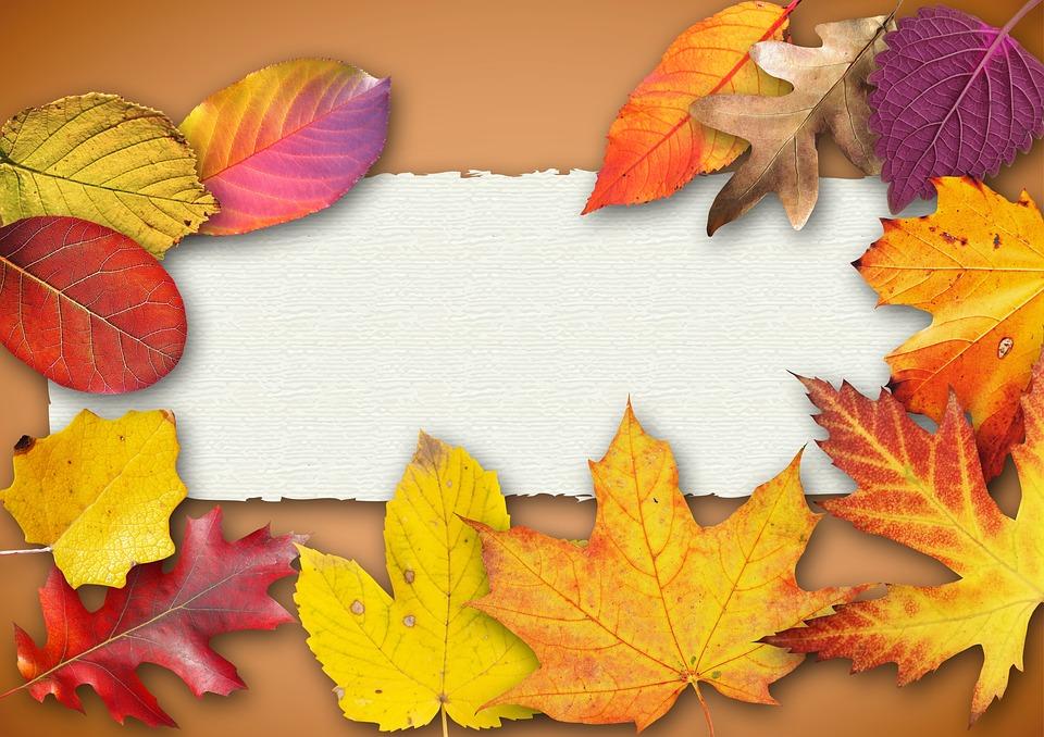 autumn banner poster text free photo on pixabay