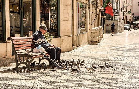 Old, Man, Elderly, Senior, People, Bench