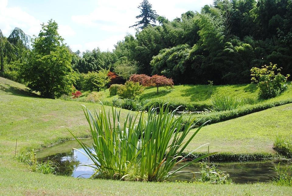Jardin Japonais Nature Paysage Photo Gratuite Sur Pixabay