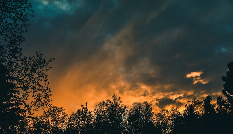 Sunset Red Sky Clouds Rural Oak Trees Evening Time Lapse Nature ...