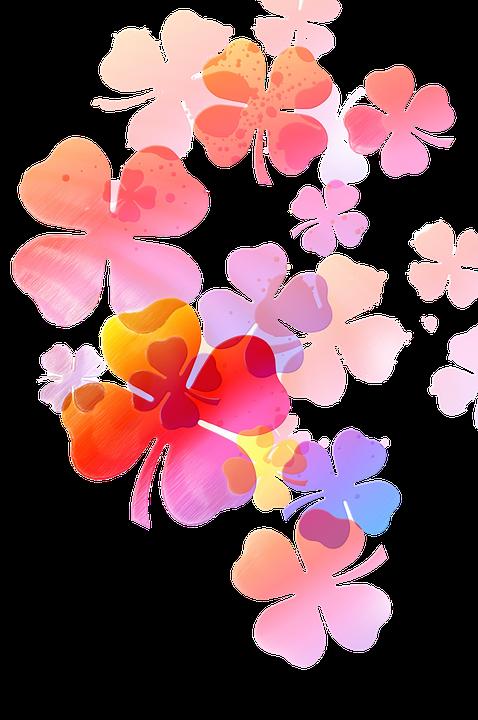 Fleur Douce Dessin Fond Image Gratuite Sur Pixabay