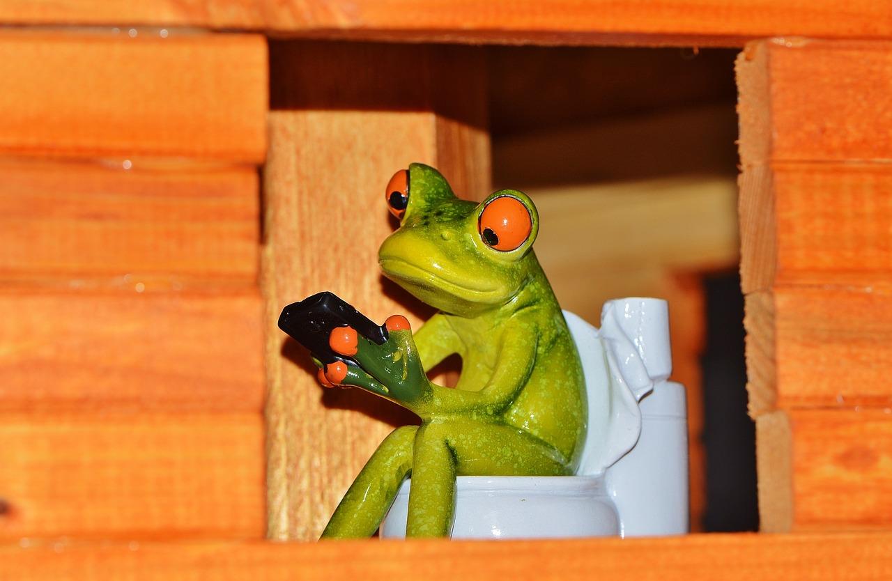 Для массажиста, картинки с лягушками на унитазе