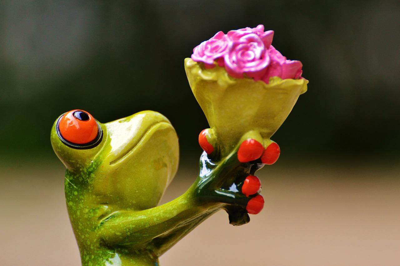 Прикольные картинки растения, открытка