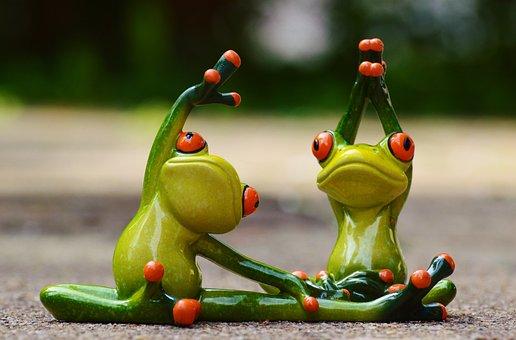 Sport, Gymnastics, Frog, Funny, Fitness