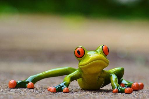 Frog free pictures on pixabay - Funny frog pictures ...
