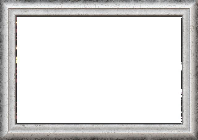 Free illustration frame picture frame outline free - Cadre photo transparent plastique ...