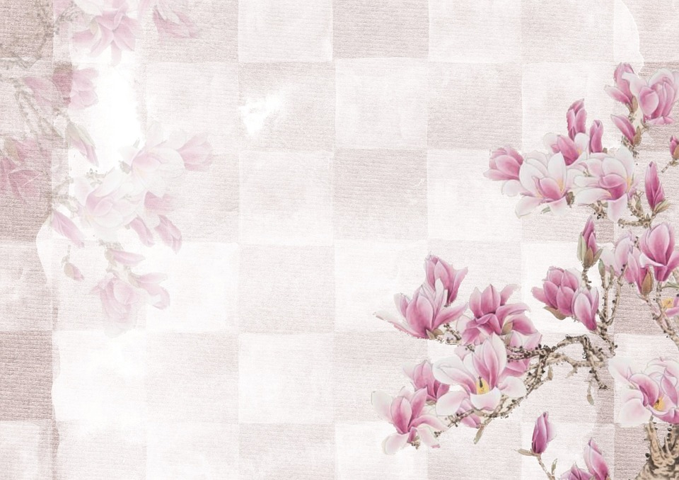 Pink background flower free image on pixabay pink background flower backdrop decoration mightylinksfo Gallery
