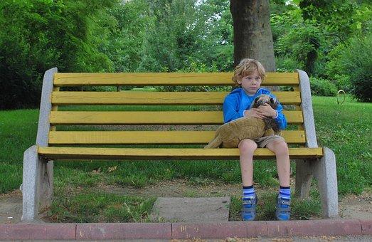 男孩, 单, 坐, 长凳, 玩具, 伤心, 儿童, 小男孩, 孤独