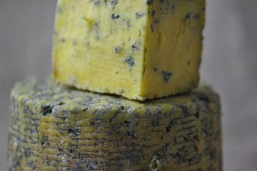 Cheese Blue Mold Home Production Cheese Ch