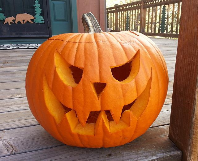 Free Photo Carved Pumpkin October Halloween Free