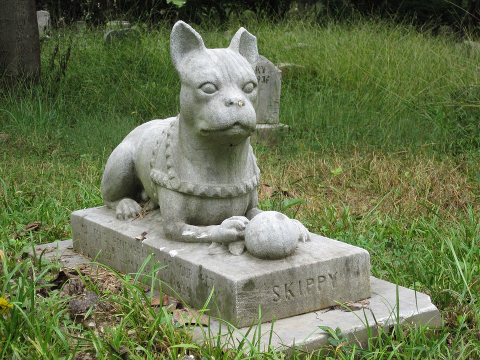 Pet Cemetery Graveyard - Free photo on Pixabay