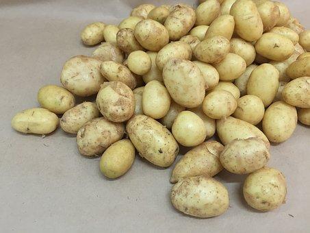 Potatoes, Young, Potato, Tubers, Tuber