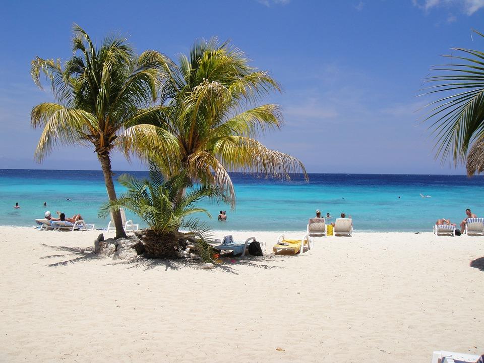 Kostenloses Foto Traumstrand Palmen Curacao