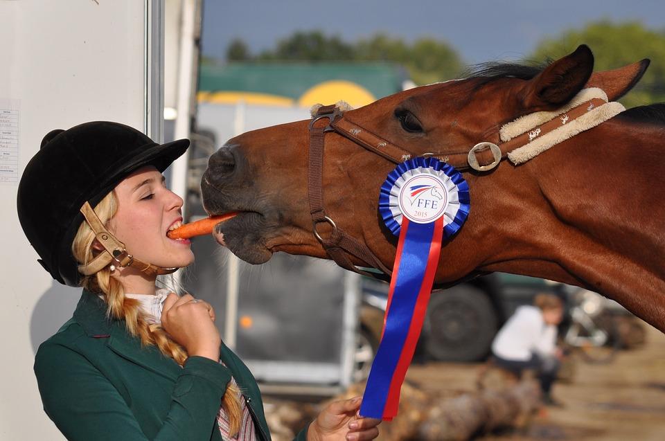 weirdest horse racing facts