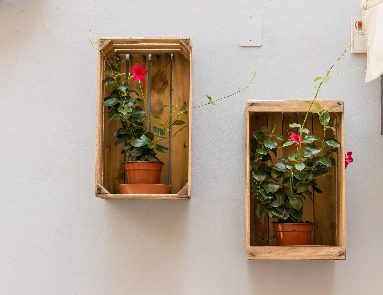 Цветы под окнами своими руками