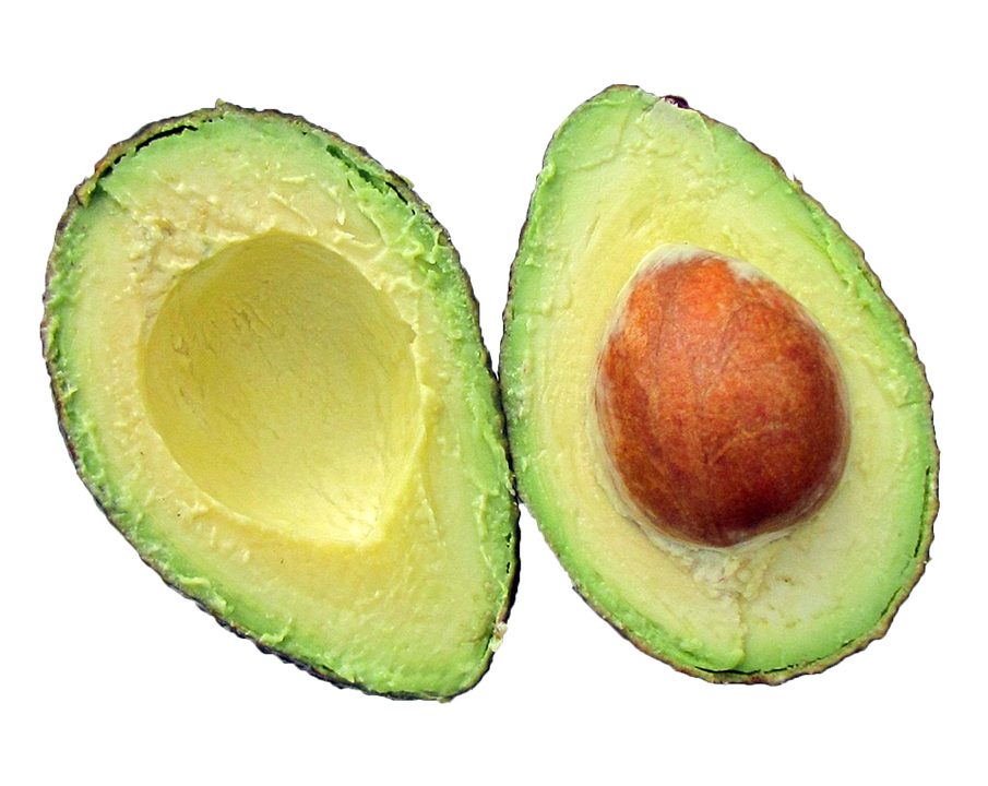 an avocado