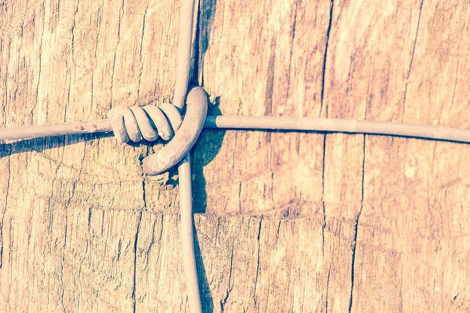 Zaun Draht · Kostenloses Foto auf Pixabay