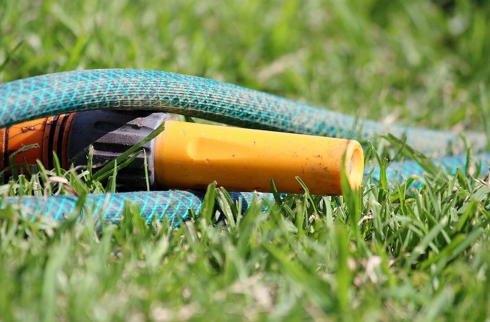 Garden Hose, Water, Casting, Grass, Hidden, Essay