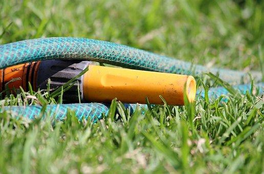 Garden Hose, Water, Casting, Grass