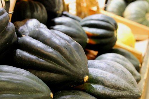 Acorn Squash, Autumn, Vegetable, Food