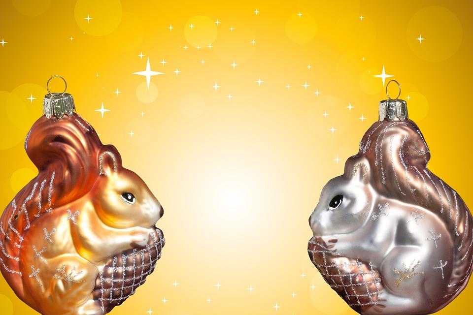 Weihnachten Eichhörnchen · Kostenloses Foto auf Pixabay