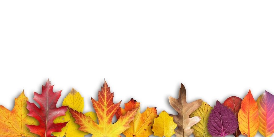 Autumn banner border text free photo on pixabay autumn banner border text box invitation map stopboris Images