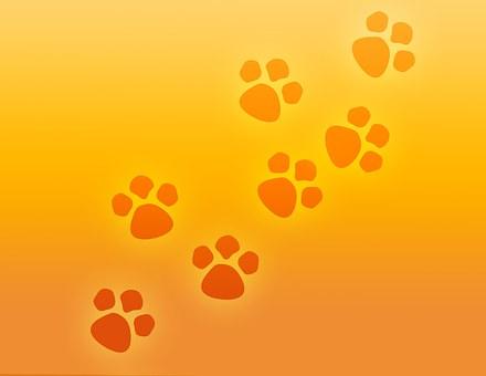 Paw Print, Paws, Prints, Pet, Dog