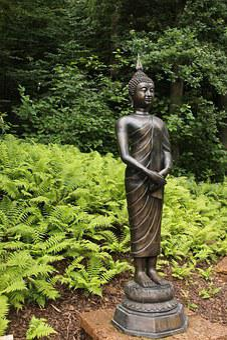 Japan Zen Garden Buddha