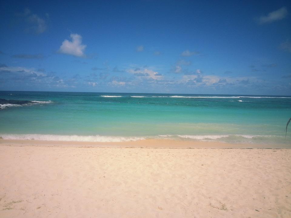 Beach Sea Sun Sand Holiday 942809 on Foam Animals Craft 2
