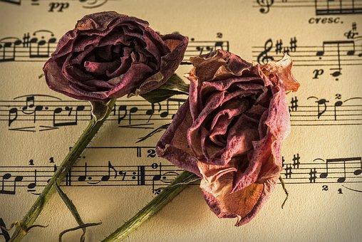 Sheet Music, Manuscrit, Vieux Temps