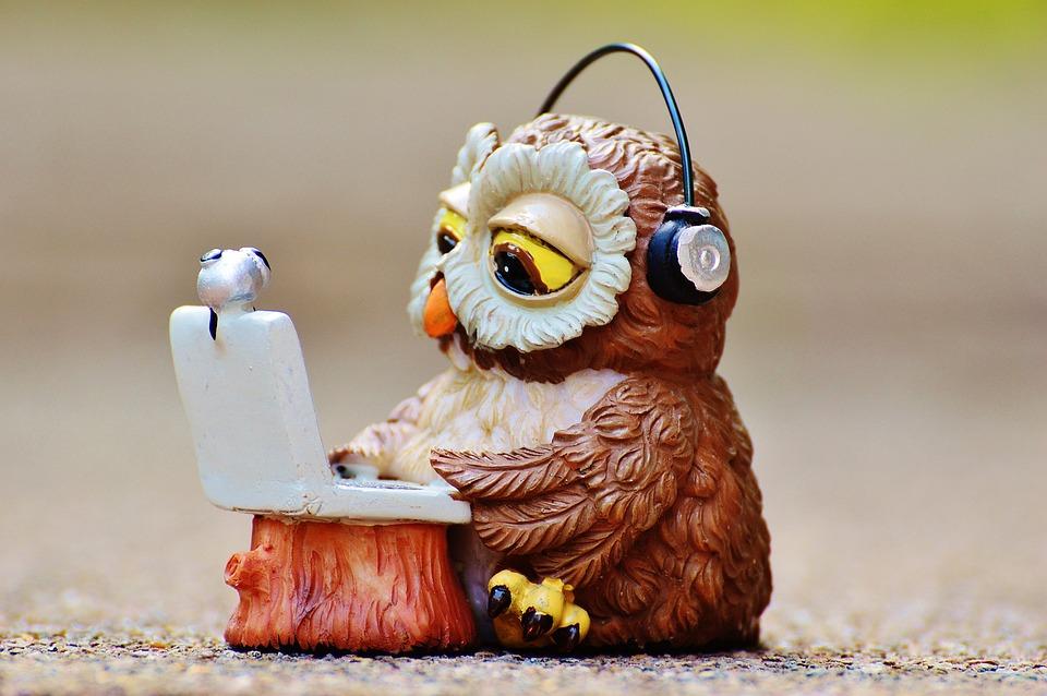 Owl, Computer, Headphones, Funny, Laptop, Notebook