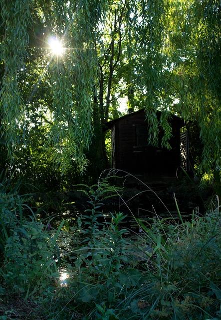 Free Photo Garden Hut Magic Sun Back Light Free