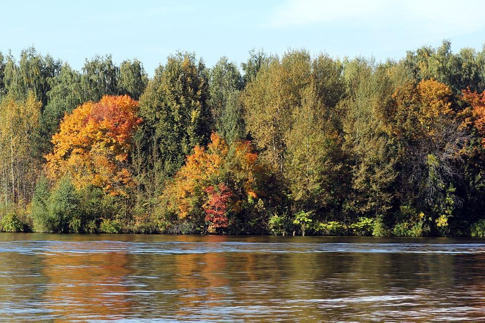Лес, Река, Осень, Природа, Вода, Небо, Воды