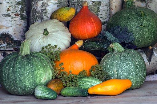 野菜, カボチャ, ズッキーニ, 収穫, 胡瓜