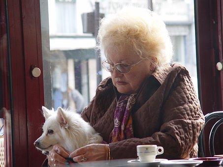 Mujer, Perro, Coffey, Cafetería