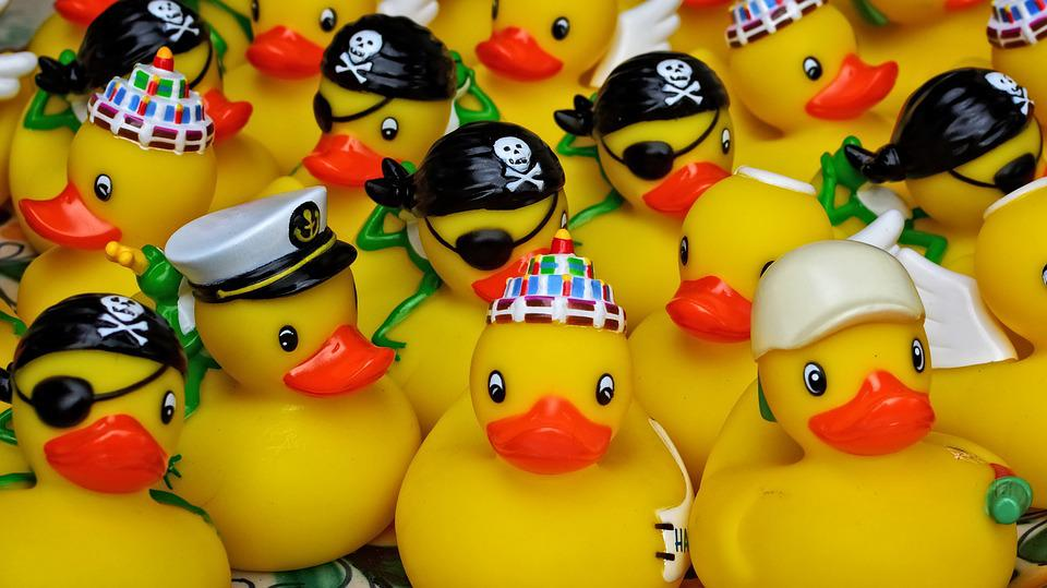Duck Rubber Toys · Free photo on Pixabay
