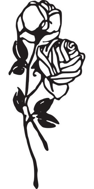 coloring pages roseart graphic skinz - photo#45