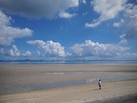 海, 暑い, 広い, 雄大, 日本, 沖縄県, 海岸, 波辺, 砂浜, 青春