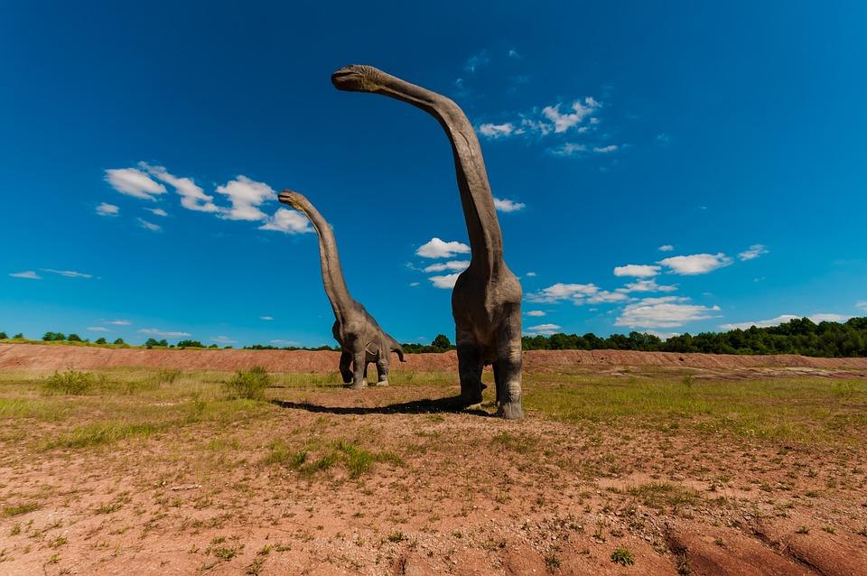 Accouplement de diplodocus