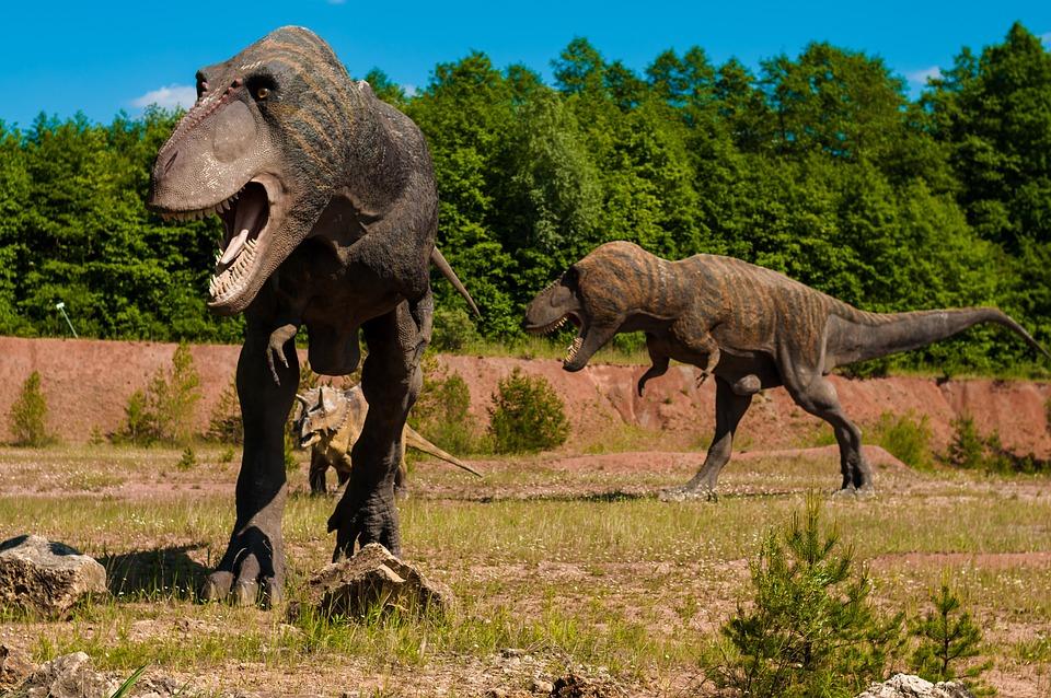 dinosaurio-hábitat-t-rex-bosques-planicies