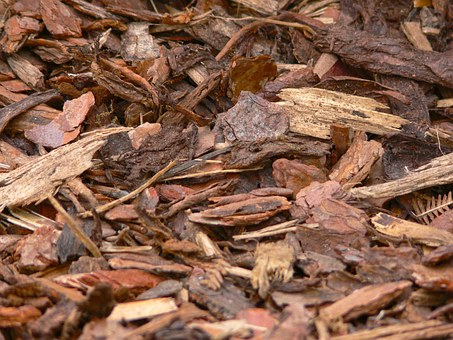Bark Mulch, Wood, Snippets, Background